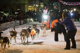 (تصاویر) مسابقات بین المللی سورتمه سواری در آلاسکای آمریکا