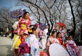 (تصاویر) جهانگردان برای دیدار از پارک شکوفه های گیلاس در توکیو همچنان  شرکت کرده اند با وجود شیوع کرنا