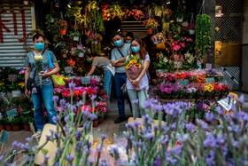 (تصاویر) مغازه گل فروشی در هنگ کنگ