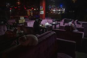 (تصاویر) نمایی از یک رستوران در پکن که خالی از جمعیت است