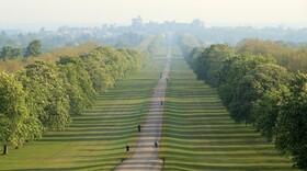 (تصاویر) پارکی در انگلیس و افرادی که ورزش می کنند