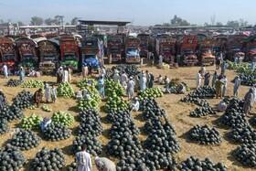 (تصاویر) بازار میوه در پیشاور پاکستان و فروش هندوانه