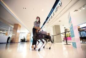 (تصاویر) سگ رباتیکی که در یک مجتمع تجاری در تایلند مواد ضد عفونی کننده توزیع می کند