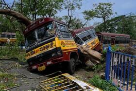 (تصاویر) سقوط درخت روی یک اتوبوس در کلکته هند و دو نیم شدن آن