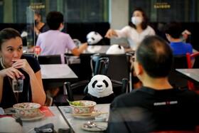 (تصاویر) نشستن پانداهای عروسکی در رستوران ها در تایلند برای رعایت فاصله فیزیکی در هنگام مراجعه مشتریان