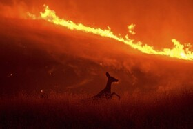 (تصاویر) آتش سوزی مراتع در کالیفرنیای آمریکا