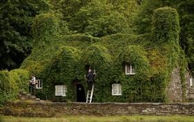 (تصاویر) آماده شدن یک قهوه خانه در ولز انگلیس برای باز گشایی پس از قرنطینه