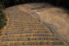 (تصاویر) قبرستانی در مانوس برزیل