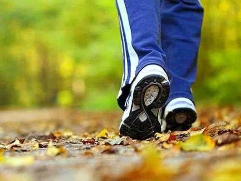 پیاده زوی