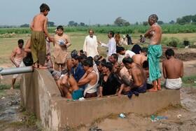 حمام عمومی در لاهور پاکستان پس از پایان فروش دام در بازار