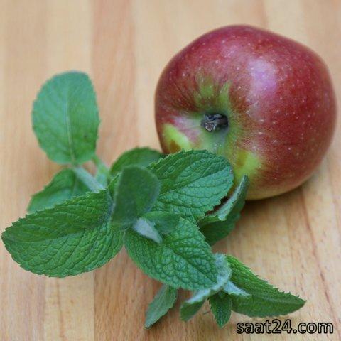 خواص نعنا سیبی